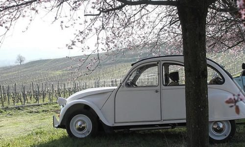 French Classic Cars, Wine & Food